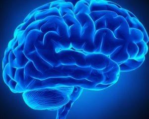 neurologia-300x300